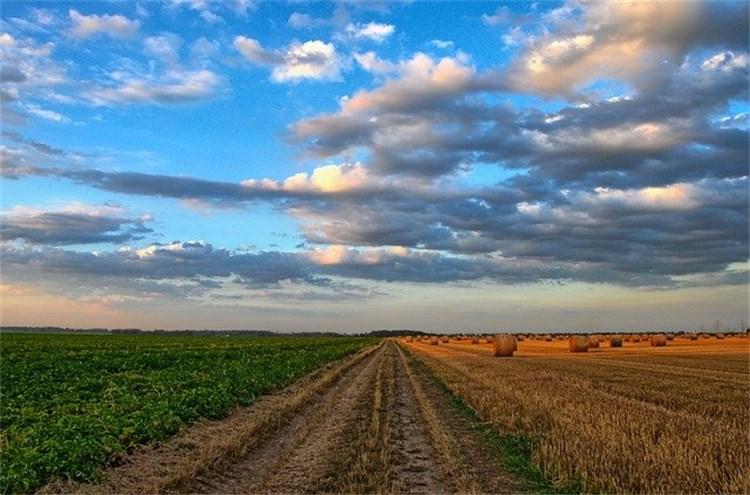 Conferencia. Agricultura y cambio climático