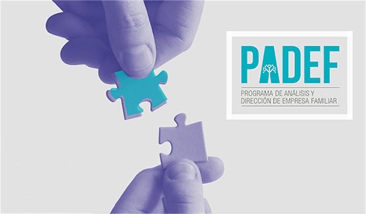 Programa de Análisis y Dirección de Empresa Familiar. PADEF