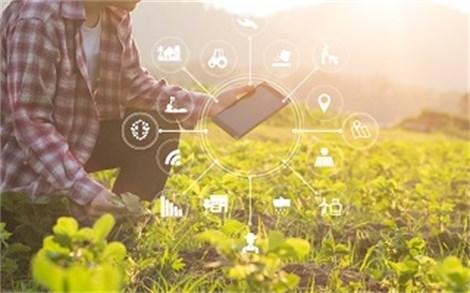 Curso. Gestión de empresas agrarias y agroalimentarias